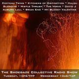 THE SHOEGAZE COLLECTIVE RADIO SHOW ON DKFM - SHOW 28 - 6-13-17