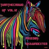 Turn The Crowd Up Vol.12