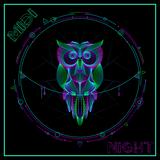MIDI NIGHT