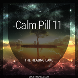 Calm Pill 11 - The Healing Lake (First Half)