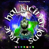 Axell Astrid - Guest Mix @ True Hallucinations [DiceRadio] (12.01.2019)
