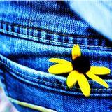 Sun in my pocket
