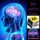 Deep Cerebral Kisses - Future Beats Radio show 022+023 @ SonneBlumenGerne music camp 2017-08-11