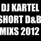 DJ KARTEL RAGGA SHORT MIX 2012