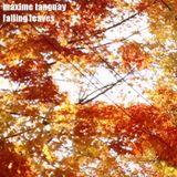 maxime tanguay - falling leaves
