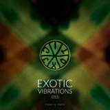Exotic Vibrations 013 (May 2015)