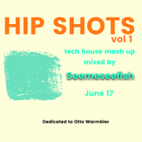 Hip Shots - tech house mashup vol 1