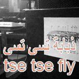Tse Tse Fly - 2nd November 2016