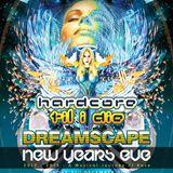 joey riot @ htid vs dreamscape nye 2012 @ Q club