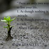 Slow Miracles are also miracles