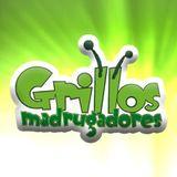 Grillos Madrugadores - Otro de seres mitológicos (141113)