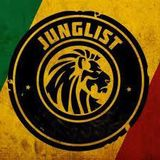 Ragga Jungle Dnb