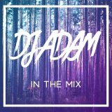 In The Mix Vol.6