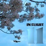 Señor Nuevo presents In Flight 11