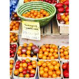 Products that reduce Food Waste, Community Garden Magazine, SNAP ONLINE test