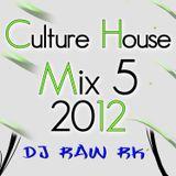 DJ RAW RK_Culture House Mix 5 2012