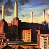 Pink Floyd -Dogs