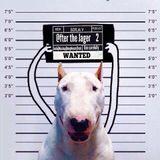 Borja V. - @fter The Jager  2