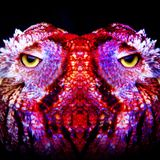 Psychedelic-Bluesrock-Mixtape