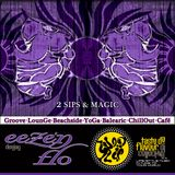 DJ EEZE 'N FLO : 2 Sips and Magic : Mix Session Volume 2 : Taste Da Flavour DJ Collective
