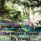 Chiapas The Mayan Forest