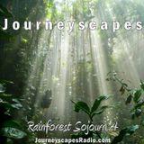 PGM 199: Rainforest Sojourn 4