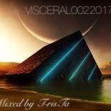 VISCERAL002///2017