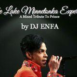 """The Lake Minnetonka Experience"" A Mixed Tribute to Prince"