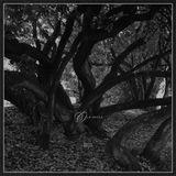 [Musicophilia] - 'Old Souls' (2015-2018)
