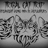 Tribal Cat Trip / Episode 1 / 29.07.2014