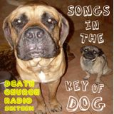 DCRadio w/ Ropstyle - Episode 16 - Songs in the Key of DOG