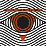 The Natural Dub Cluster - DLSO Introducing Mixtape