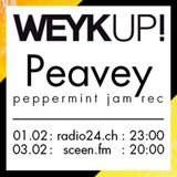 WEYKUP! Radio with Peavey (Peppermint Jam Records)