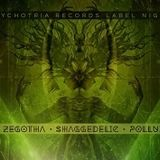 Psychotria Records Label Night with Fobi (2016.01.09)