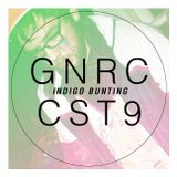 Guest Mix #5: Indigo Bunting