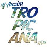 DJ Aws1m - Tropicana