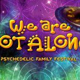 Klanglabyrinth aka Lightlabyrinth - We are not Alone Festival 2017