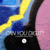 can you dig it? (a not really disco mix from the past)