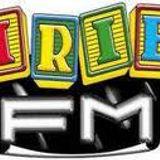 IRIE FM ( JA ) Feb 1996  Sunday Morning Tunes  PT 2