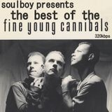 fine young cannibals    best of