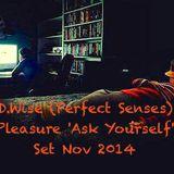 D.Wise (Perfect Senses) Pleasure 'Ask Yourself' Set Nov 2014