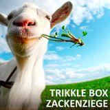 Trikkle Box - Zackenziege