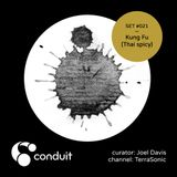 Conduit Set #021 | Kung Fu (Thai spicy) (curated by Joel Davis) [TerraSonic]