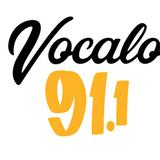 Caveman's mix for Vocalo Radio 3-2018 (disco house, nu-disco disco, jackin)