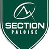 Section Paloise - Massy : Pro D2, 8 Janvier 2015.