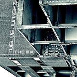 TWELVE JUNKEEZ / D.I.C.E IN THE MIX
