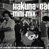 Hakuna-Bachata Mini Mix