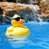 "Young Lords Presents ""Summerdaze: Pool Party Minimix"""