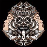 TribeAlive