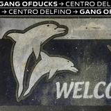 Centro Delfino (16 May 19) - Gang Of Ducks